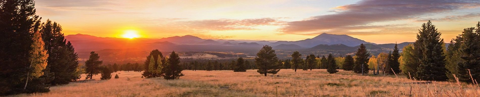 Flagstaff is truly a beautiful place.